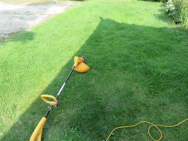 2017年8月27日 2回目の芝刈り作業_b0341140_16121619.jpg