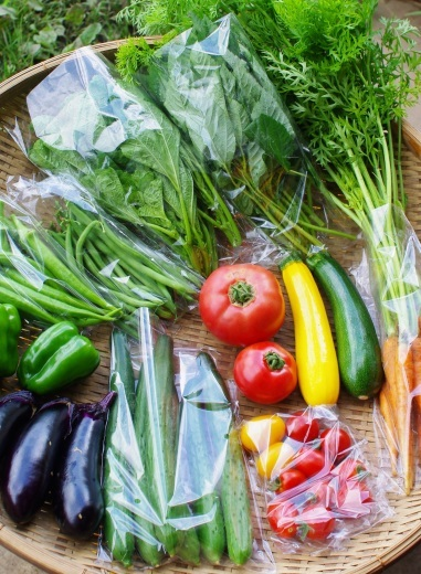 今週の野菜セット(8/22~8/26着)_c0110869_12545188.jpg