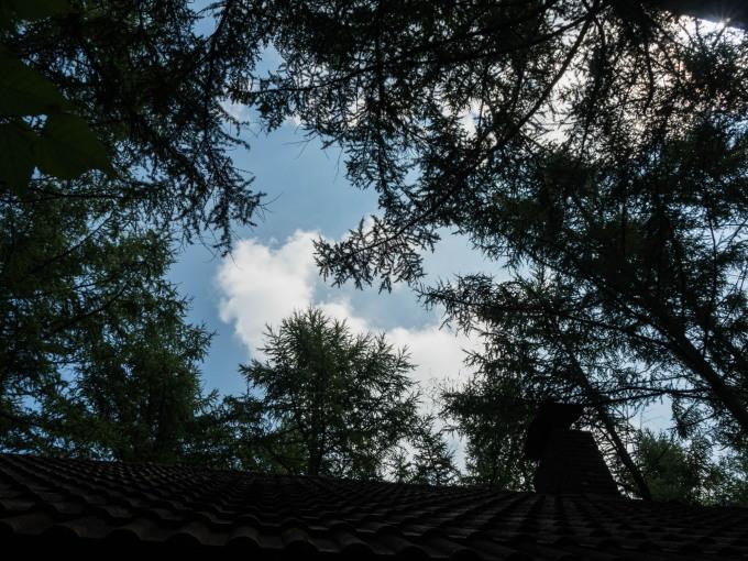 ひさびさに見た青い空は秋の空!エゾリス君は冬支度開始!_f0276498_22570191.jpg