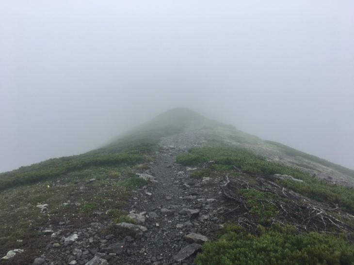 2017 夏休み一人登山 南アルプス南部 その1_e0000910_13292567.jpg