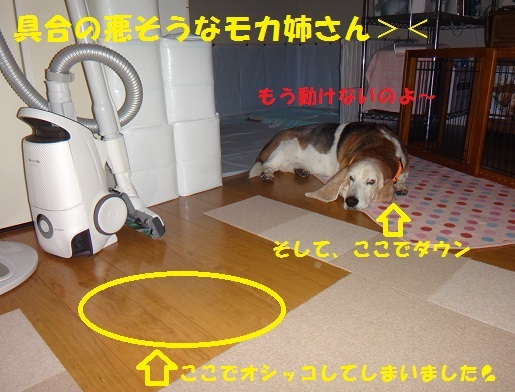 f0121712_00591464.jpg