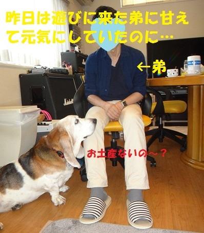f0121712_01102826.jpg