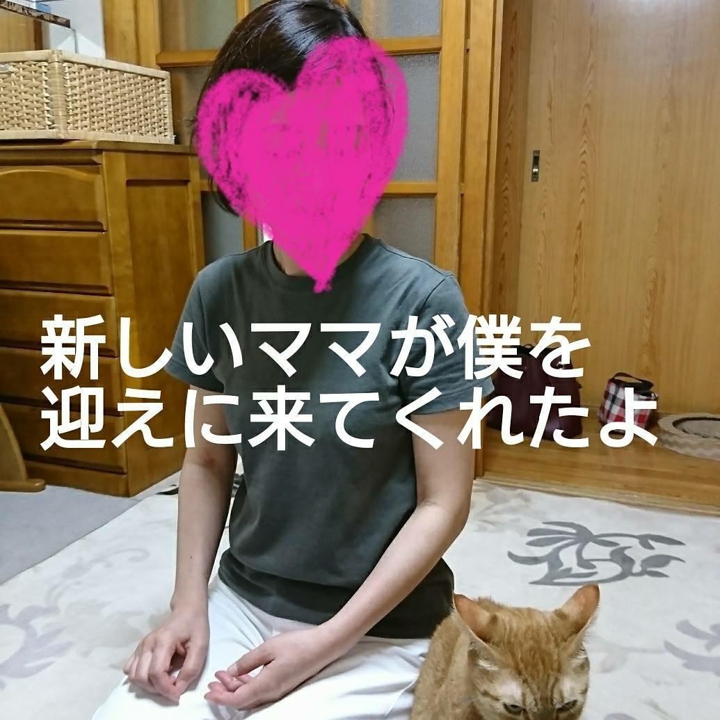 b0274815_23503247.jpg