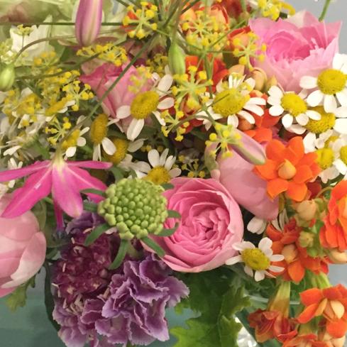 お花 ♪_e0042839_20164157.jpg