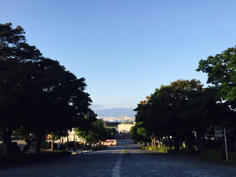 函館の坂の上から_a0103940_16190959.jpg