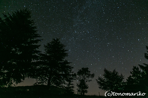 星がふってくる!_c0024345_06490127.jpg