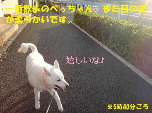 f0121712_11010971.jpg