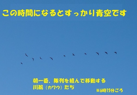 f0121712_11201705.jpg