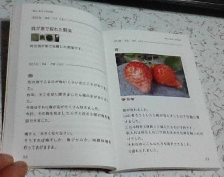 b0366527_20084104.jpg