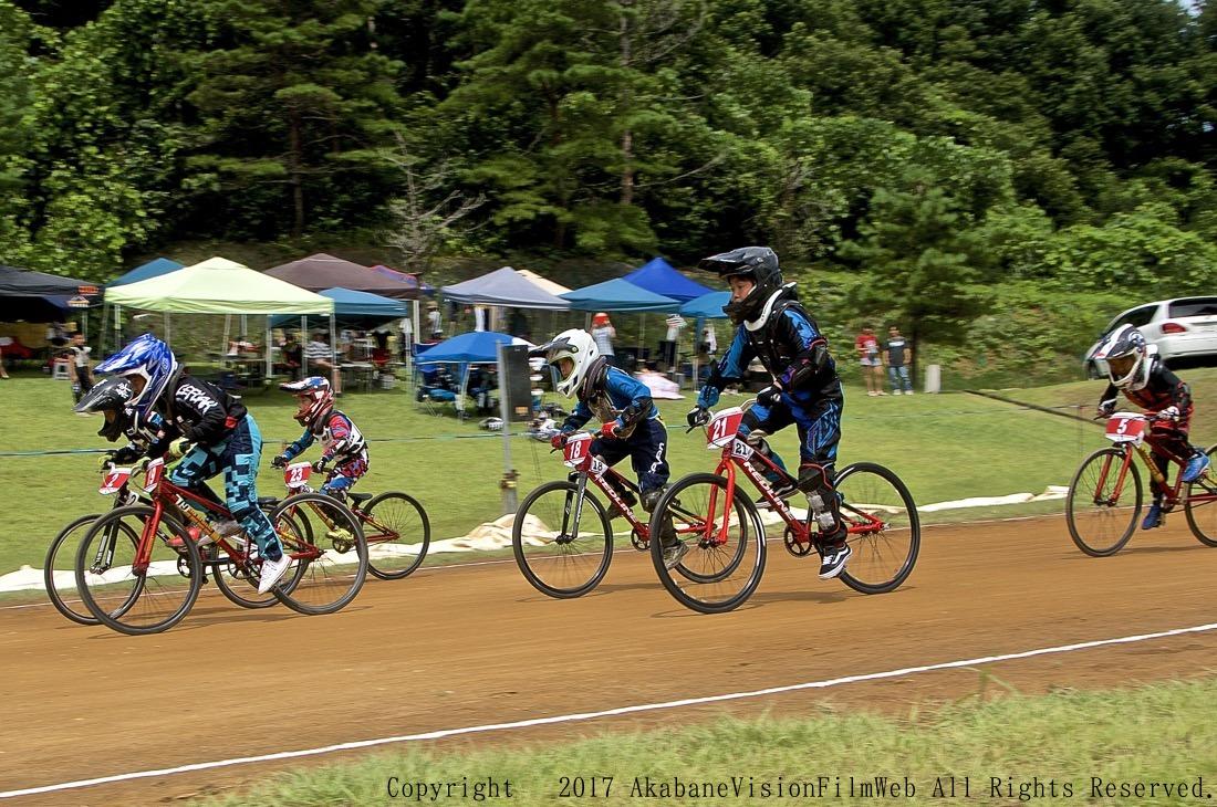 2017 JBMXFシリーズ第4戦 新潟・上越大会VOL7:予選その1_b0065730_21262957.jpg