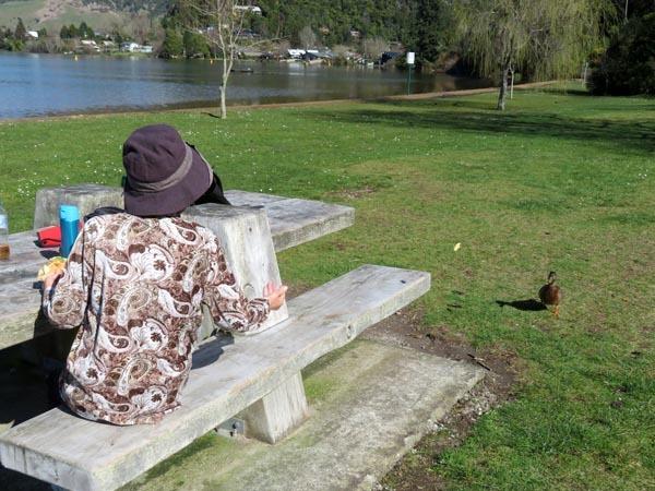 カモと湖_e0133780_20152730.jpg