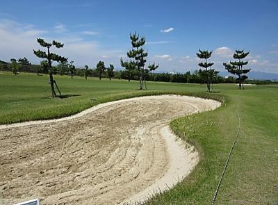 平成29年6月 ゴルフ場 管理作業 その4_d0338682_10212712.png
