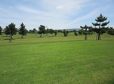 平成29年6月 ゴルフ場 管理作業 その4_d0338682_10245086.png
