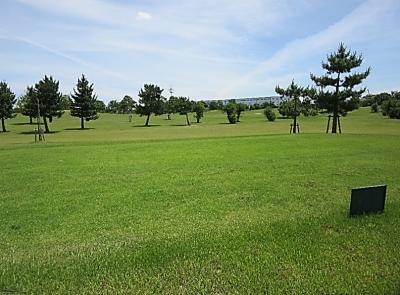 平成29年6月 ゴルフ場 管理作業 その4_d0338682_10253142.png