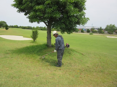 平成29年6月 ゴルフ場 管理作業 その4_d0338682_10291182.png