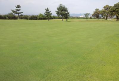 平成29年6月 ゴルフ場 管理作業 その5_d0338682_10585280.png