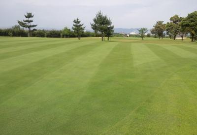 平成29年6月 ゴルフ場 管理作業 その5_d0338682_10591118.png
