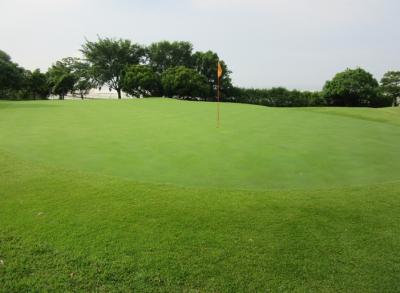 平成29年6月 ゴルフ場 管理作業 その5_d0338682_11040419.png