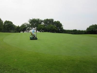 平成29年6月 ゴルフ場 管理作業 その5_d0338682_11042888.png
