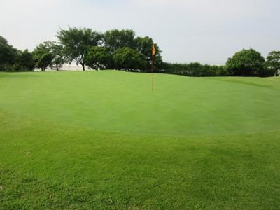 平成29年6月 ゴルフ場 管理作業 その5_d0338682_11050069.png