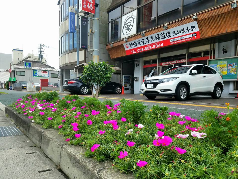 福岡から朝一のJAL便で、高知市知寄町の高知県本部に戻ってきました。_c0186691_10462018.jpg