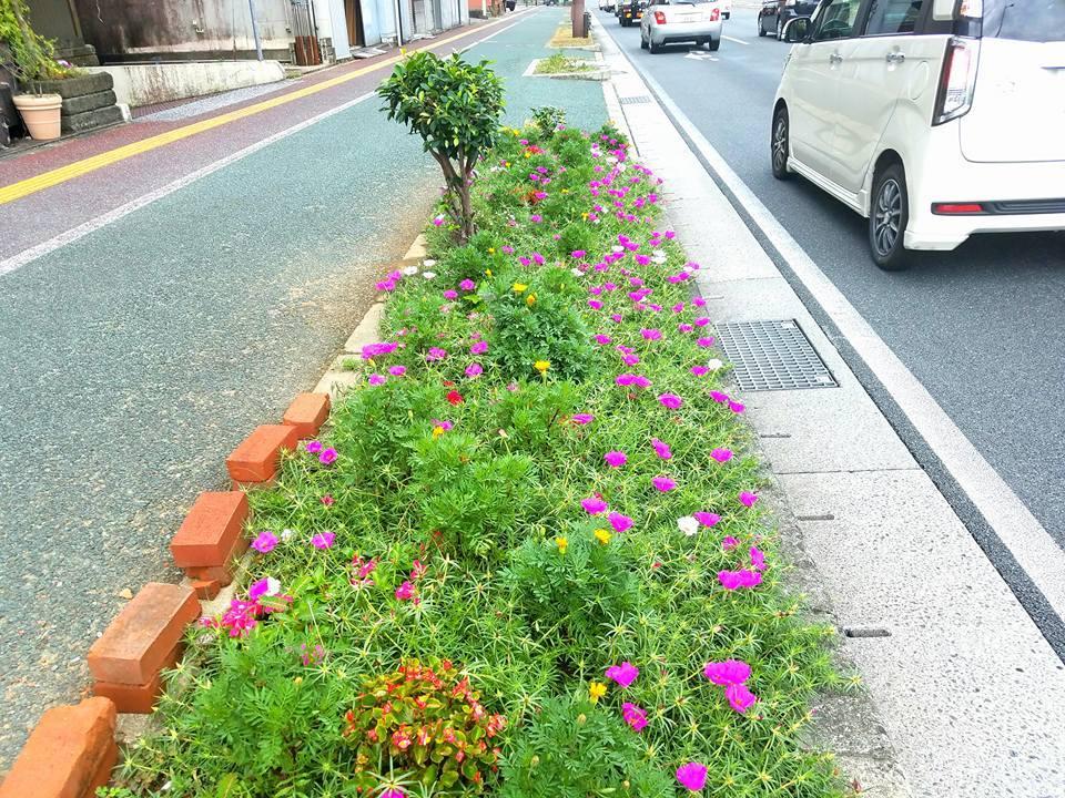 福岡から朝一のJAL便で、高知市知寄町の高知県本部に戻ってきました。_c0186691_10514958.jpg