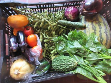 野菜たっぷり_a0203003_22183912.jpg