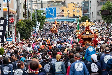 東京の風景 富岡八幡宮例大祭 後ろ姿_b0133053_00053463.jpg