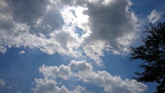 露草と空。_d0362666_11205441.jpg