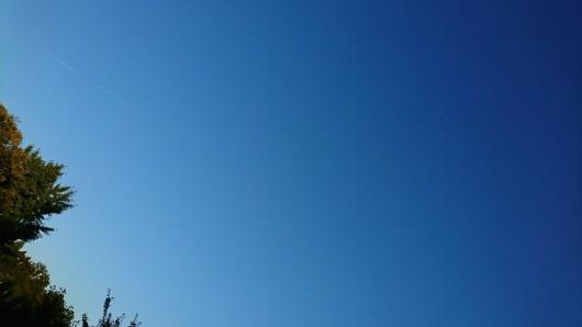 露草と空。_d0362666_18154607.jpg