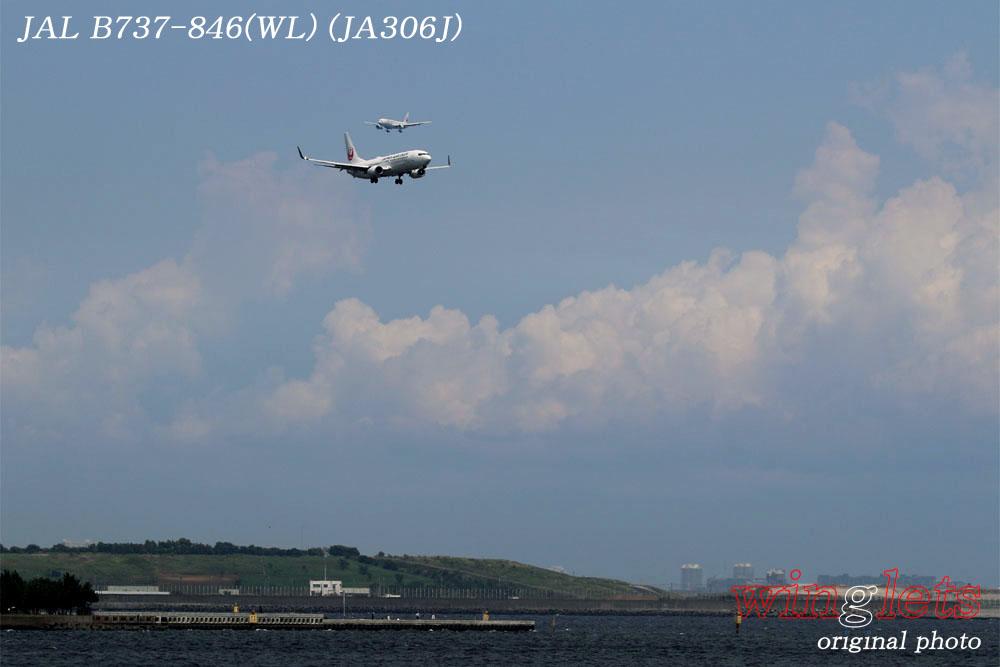 '17年 京浜島・つばさ公園レポート ・・・JAL/JA306J_f0352866_23425742.jpg