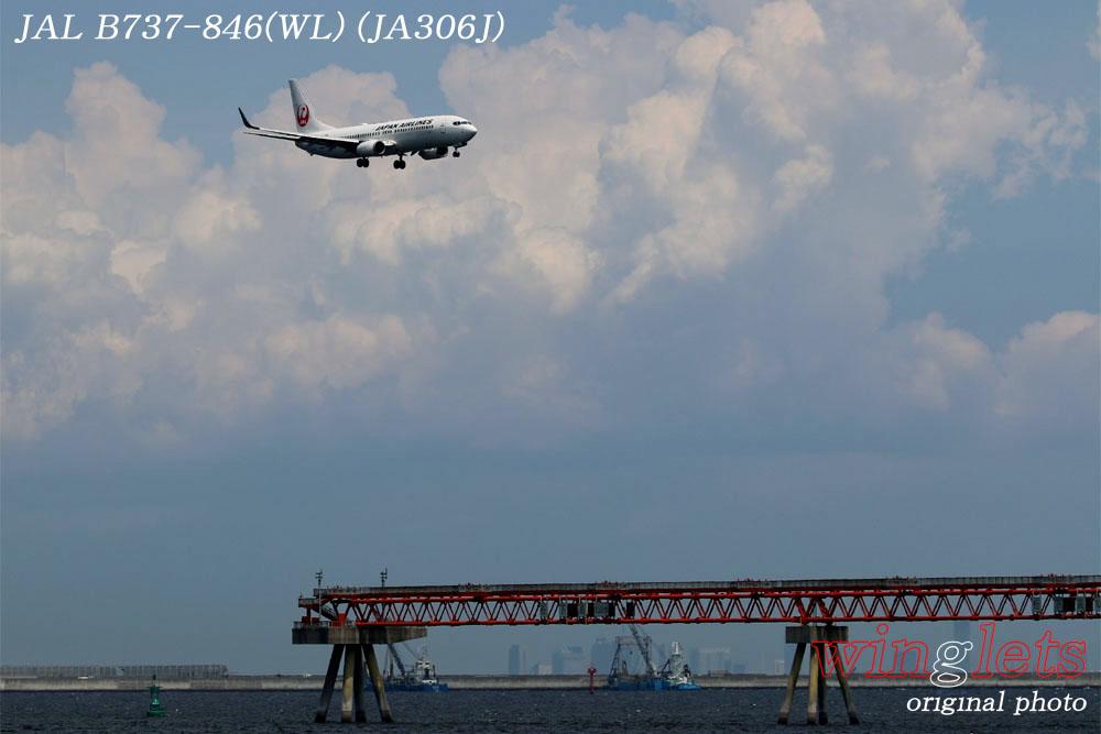 '17年 京浜島・つばさ公園レポート ・・・JAL/JA306J_f0352866_2343977.jpg
