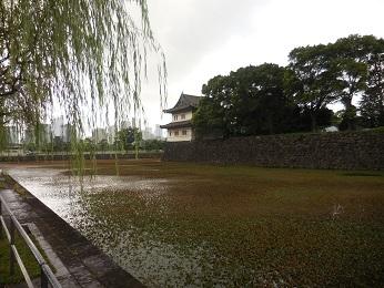 江戸城_e0033570_19073608.jpg