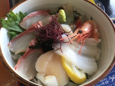 レストランシーサイドうらどめ ご当地海鮮丼_e0115904_00342653.jpg