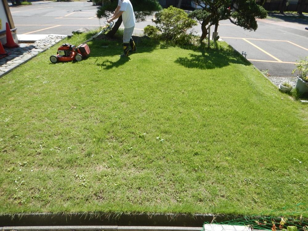 境内の草刈り開始_c0111229_21273027.jpg