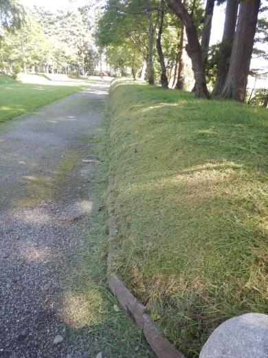 境内の草刈り開始_c0111229_21275216.jpg