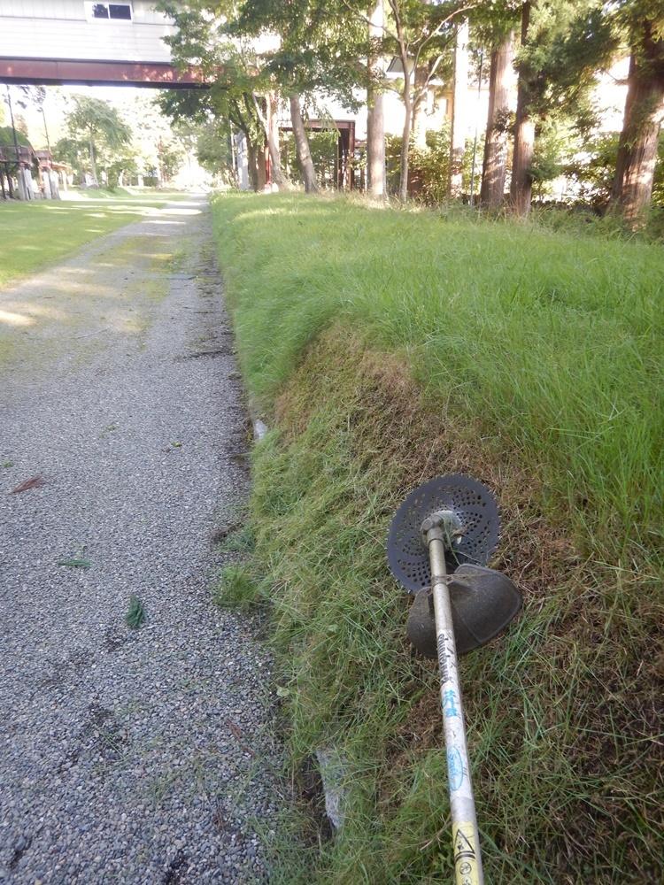 境内の草刈り開始_c0111229_21282815.jpg