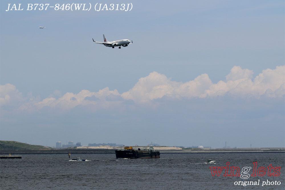 '17年 京浜島・つばさ公園レポート ・・・JAL/JA313J_f0352866_23114174.jpg