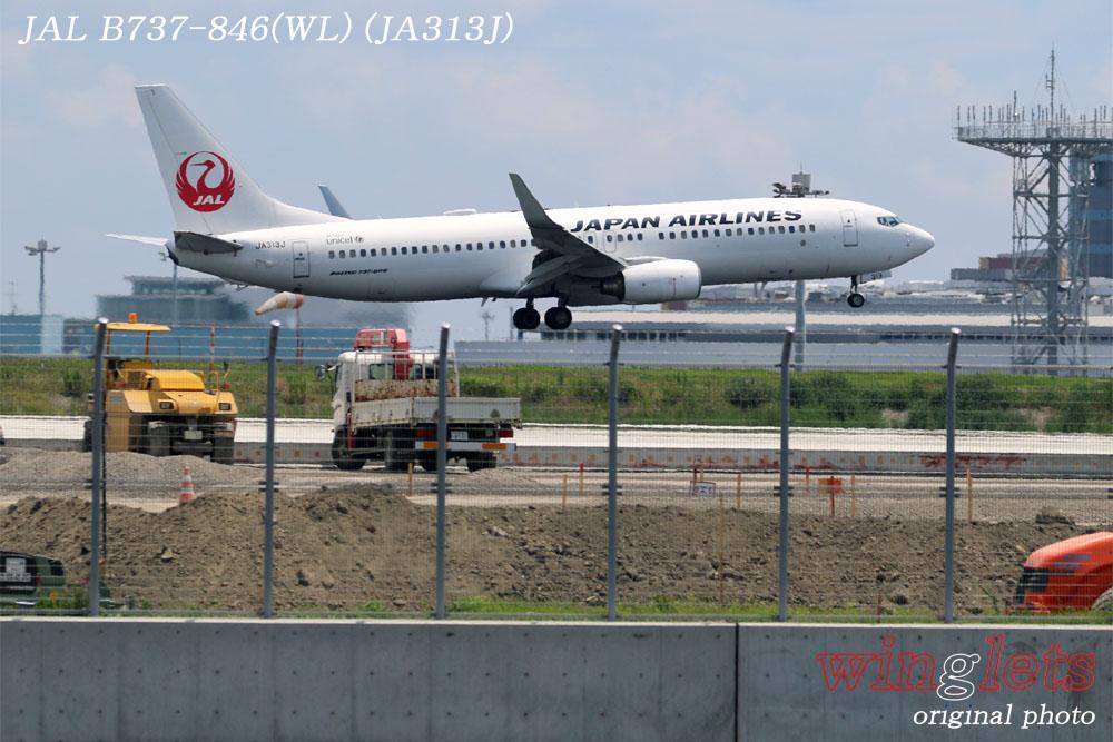 '17年 京浜島・つばさ公園レポート ・・・JAL/JA313J_f0352866_23115016.jpg
