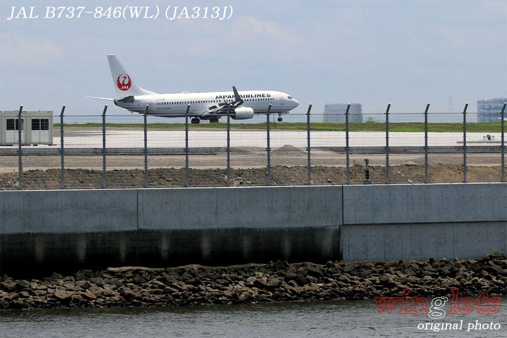'17年 京浜島・つばさ公園レポート ・・・JAL/JA313J_f0352866_2312054.jpg
