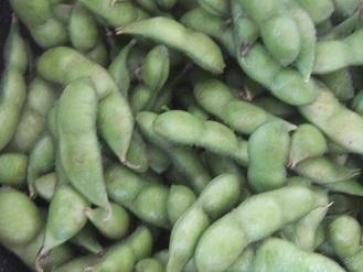 今年もいただきました。「殿様のだだちゃ豆」 冷凍しました。_f0362073_18133459.jpg