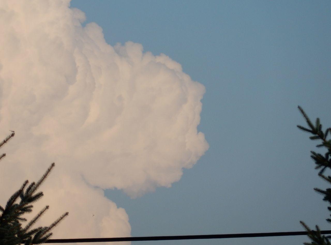 8月26日の雲_c0025115_21285634.jpg