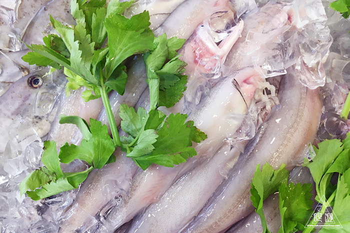 565 広州市 ~レストランの鮮魚たち~_c0211532_12000686.jpg