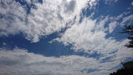 雨のちさんぽ。_d0362666_12231580.jpg