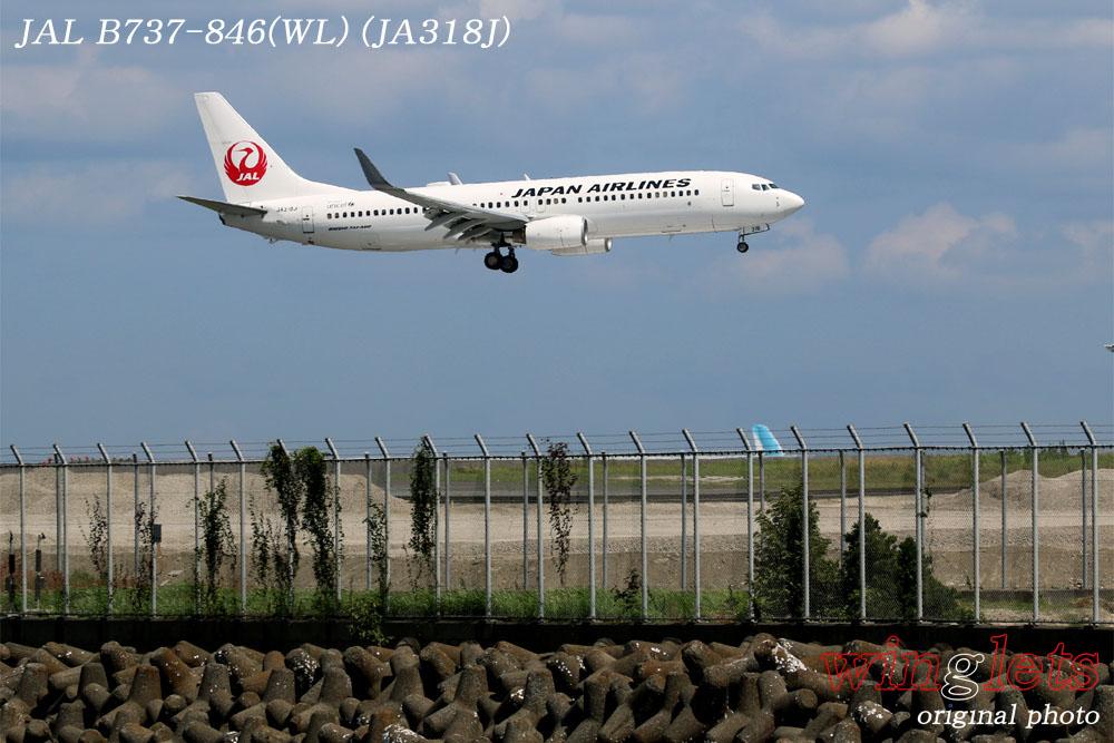'17年 京浜島・つばさ公園レポート ・・・JAL/JA318J_f0352866_23211530.jpg