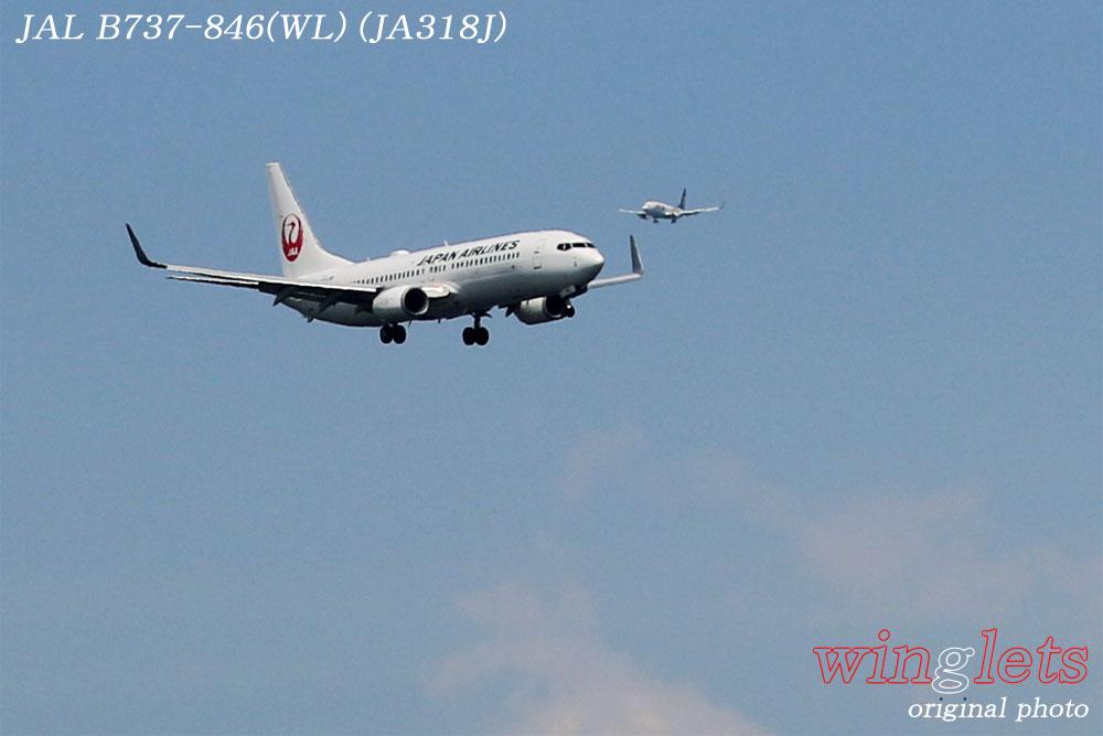 '17年 京浜島・つばさ公園レポート ・・・JAL/JA318J_f0352866_2321641.jpg