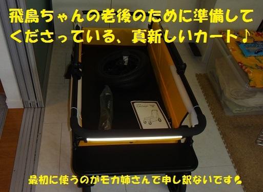 f0121712_15015515.jpg