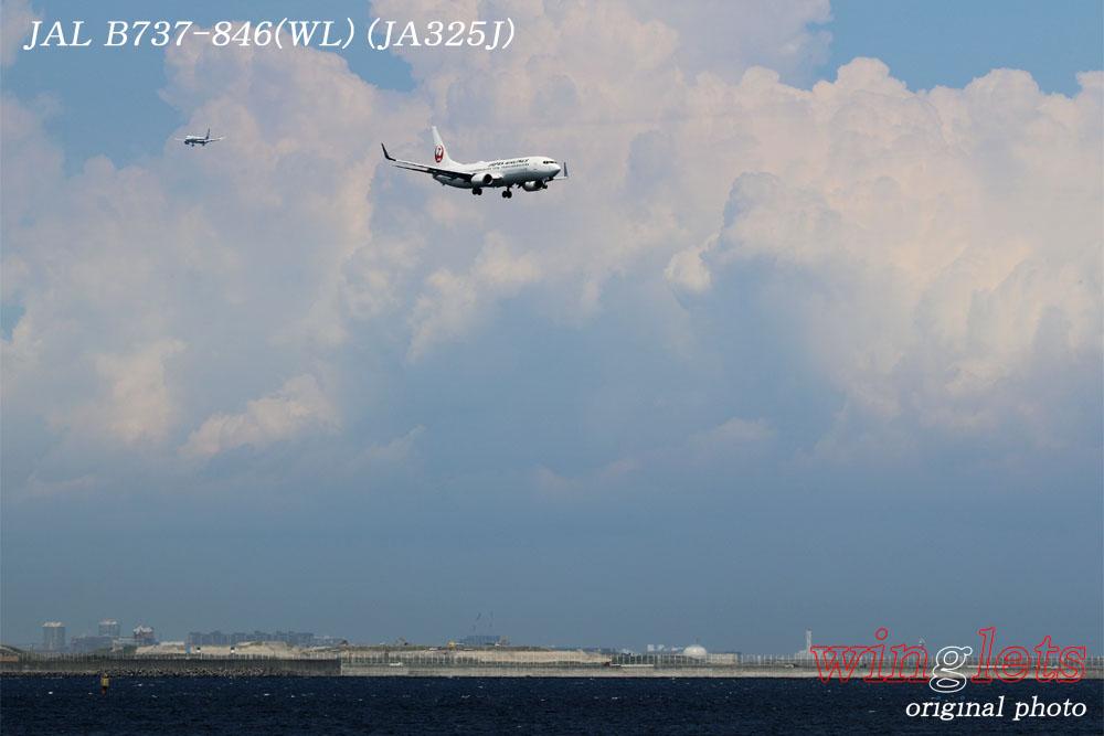 '17年 京浜島・つばさ公園レポート ・・・JAL/JA325J_f0352866_212648100.jpg