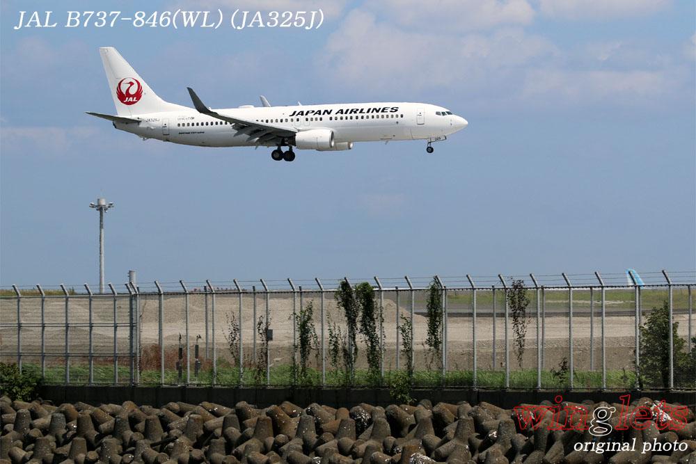 '17年 京浜島・つばさ公園レポート ・・・JAL/JA325J_f0352866_2127960.jpg