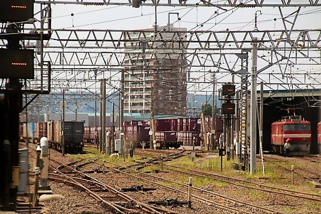 藤田八束の鉄道写真@青い森鉄道の鉄道写真、りんごの笑顔が見える岩木山、貨物列車「金太郎」と青い森鉄道_d0181492_21484549.jpg